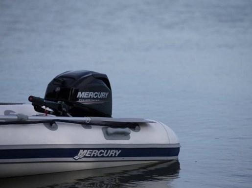 2017 Mercury 20 hp Photo 3 of 5
