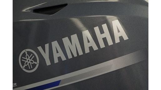 2018 Yamaha F20SPA Photo 5 of 7