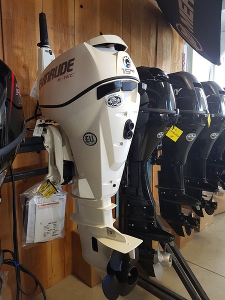 2018 Evinrude E-TEC 15 H.O. E15HTSL White Photo 1 of 8