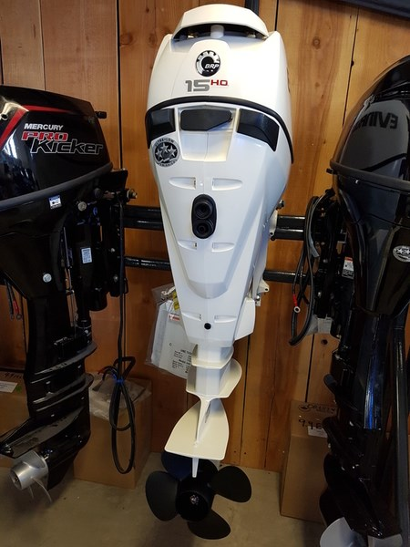 2018 Evinrude E-TEC 15 H.O. E15HTSL White Photo 2 of 8