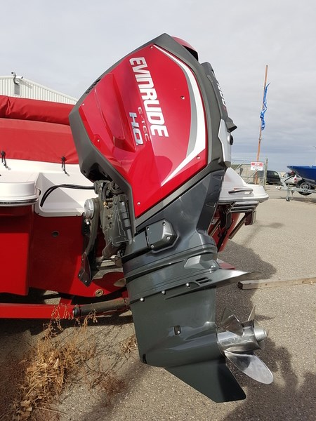 2018 Evinrude E-TEC 15 H.O. E15HTSL White Photo 6 of 8