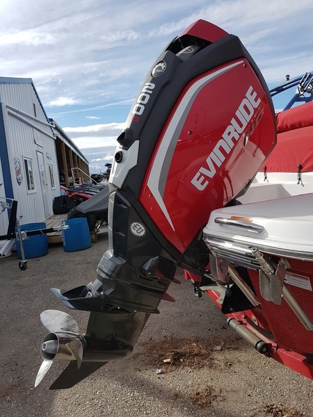 2018 Evinrude E-TEC 15 H.O. E15HTSL White Photo 7 of 8