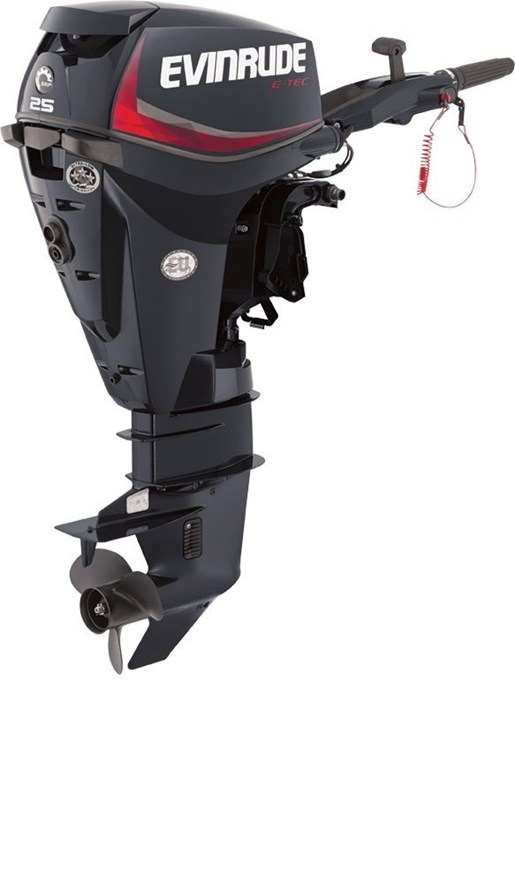 2018 Evinrude E-TEC Inline 25 HP - E25DRGL Photo 1 of 1
