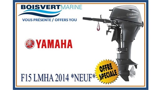 2014 Yamaha F15LMHA Photo 1 of 2
