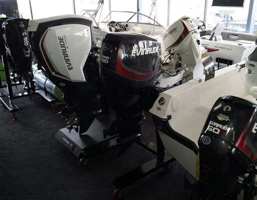 2018 Evinrude E-TEC Photo 4 of 7