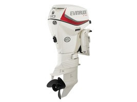 2017 Evinrude E-Tec 50 HP E50DSL Photo 1 of 1