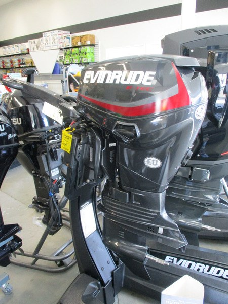2017 Evinrude E40DGTLAG Photo 1 of 1