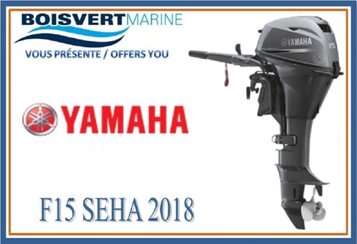 2018 Yamaha F15SEHA Photo 1 of 2