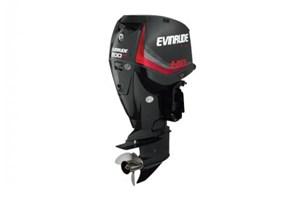 Evinrude 200 H.O. - E200HGL Graphite 2017