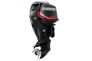 "Evinrude E250HGL 20"" 2015"
