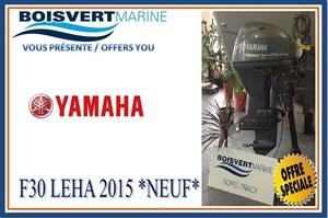 Yamaha F30LEHA 2015