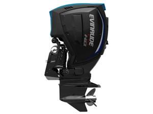 Evinrude E-Tec G2 250 H.O. E250XH 2017