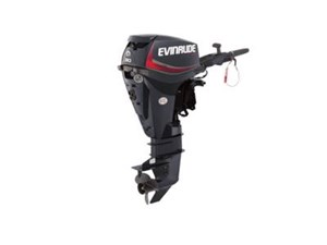 Evinrude E-TEC 30 HP E30DGTL Graphite 2018