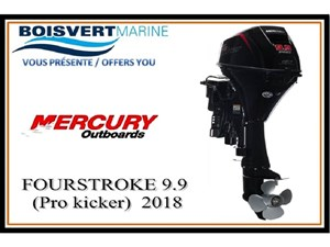 Mercury FOURSTROKE 9.9 (Pro kicker) 2018