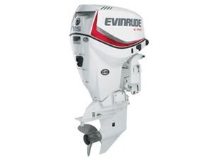 Evinrude E-Tec 115 HP E115DSL 2017