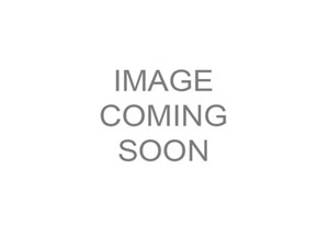 Evinrude E-TEC 15 H.O. E15HPSX White 2018