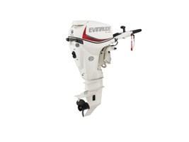 Evinrude E-TEC 30 HP E30DTSL White 2018