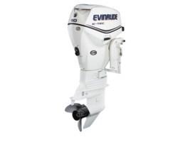Evinrude Inline 50 E50DSL 2013