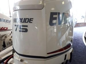 Evinrude E75DSLAF 2018