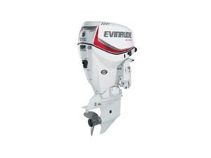 Evinrude E-TEC 115 HP E115DSL White 2018