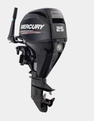 Mercury 20 MH EFI 4ST 2019