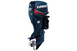 2014 Evinrude Inline 75-HP E75DPL
