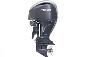 2021 Yamaha LF250XB