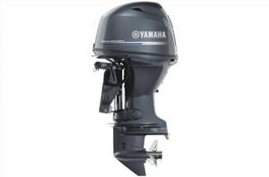 2022 Yamaha F50 - 20 in. Shaft