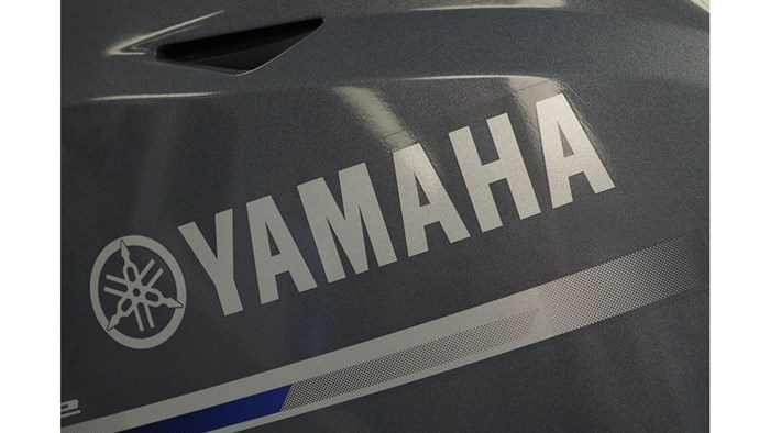 2018 Yamaha F20SPA Photo 5 of 7