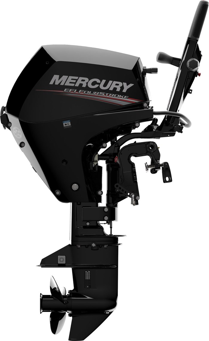 2020 Mercury 15MH 4-Stroke EFI Photo 6 of 13