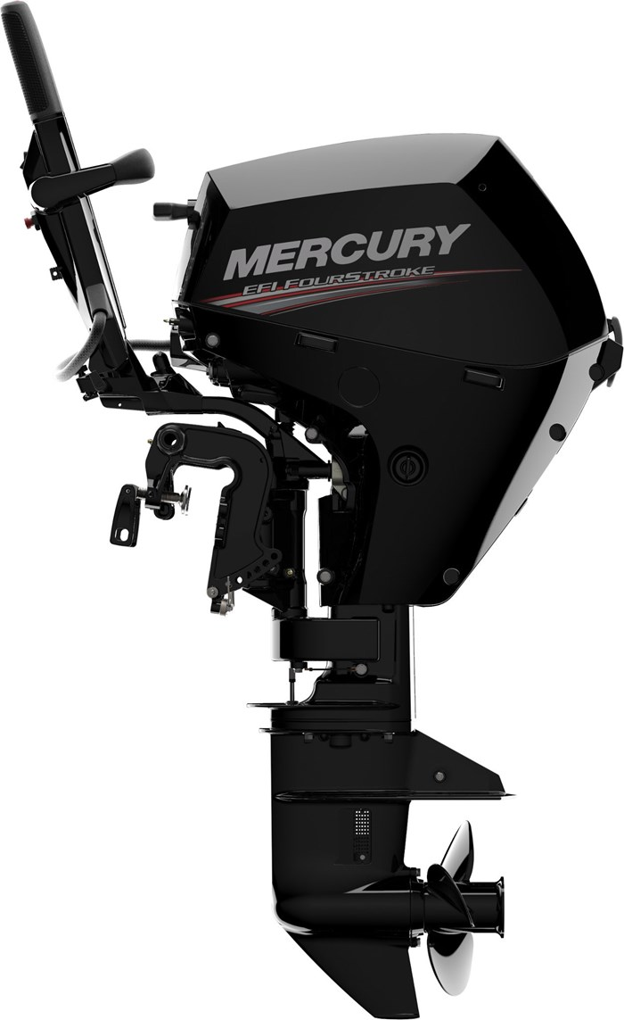2020 Mercury 15ELH 4-Stroke EFI Photo 5 of 13