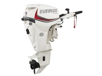 2017 Evinrude E-Tec 25 HP E25DRSL Photo 1 of 1