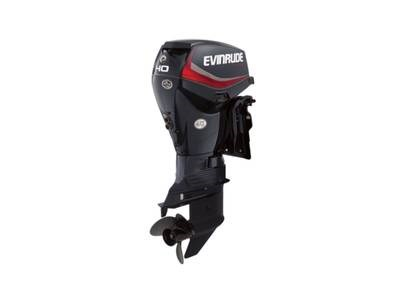 2019 Evinrude E-TEC 40 HP E40DGTL Graphite Photo 1 of 1