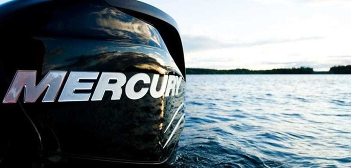 2019 Mercury FOURSTROKE 15 (Pro kicker) Photo 2 of 2