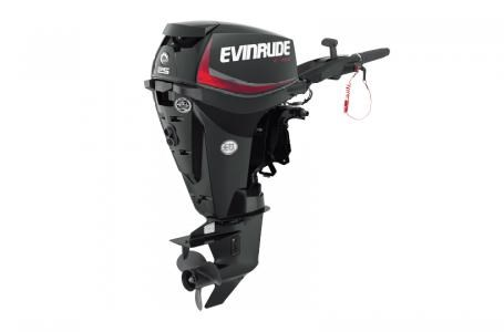 2018 Evinrude E25DGTLAF Photo 2 of 3