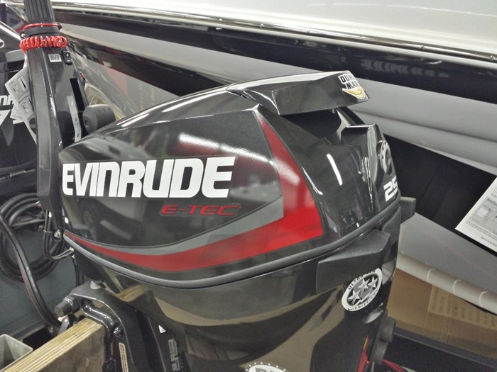 2018 Evinrude E25DGTLAF Photo 3 of 3