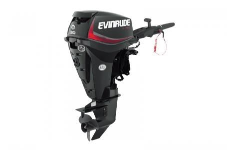 2018 Evinrude E30DGTLAF Photo 1 of 1