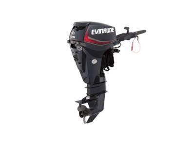 2018 Evinrude E-TEC 25 HP E25DPGL Graphite Photo 1 of 1