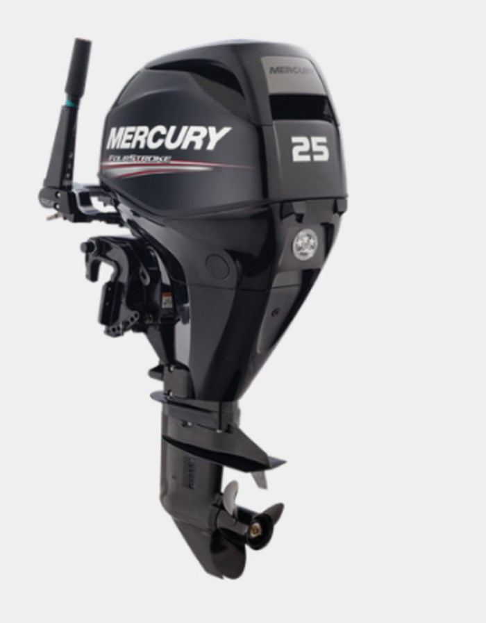 2019 Mercury 20 MH EFI 4ST Photo 1 of 1