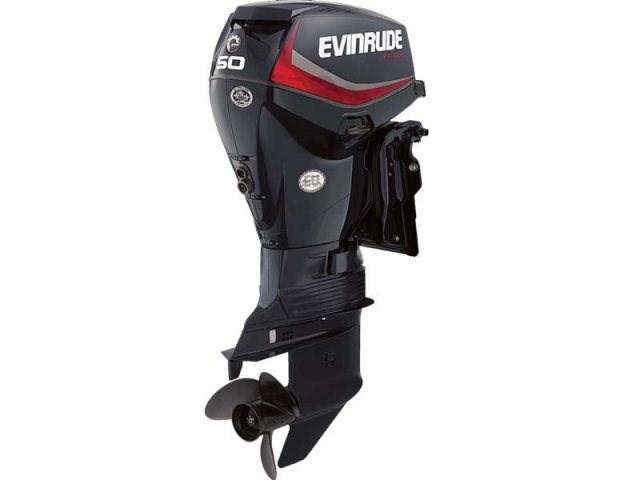 2018 Evinrude E50DPGL Photo 1 of 1