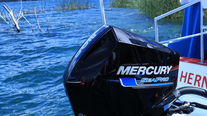 2021 Mercury 200CXL V-6 4-Stroke SeaPro DTS Commercial Outboard Photo 25 of 26
