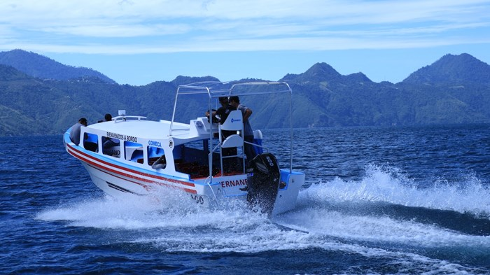 2020 Mercury 200XL V-6 4-Stroke SeaPro DTS Commercial Outboard Photo 22 of 27