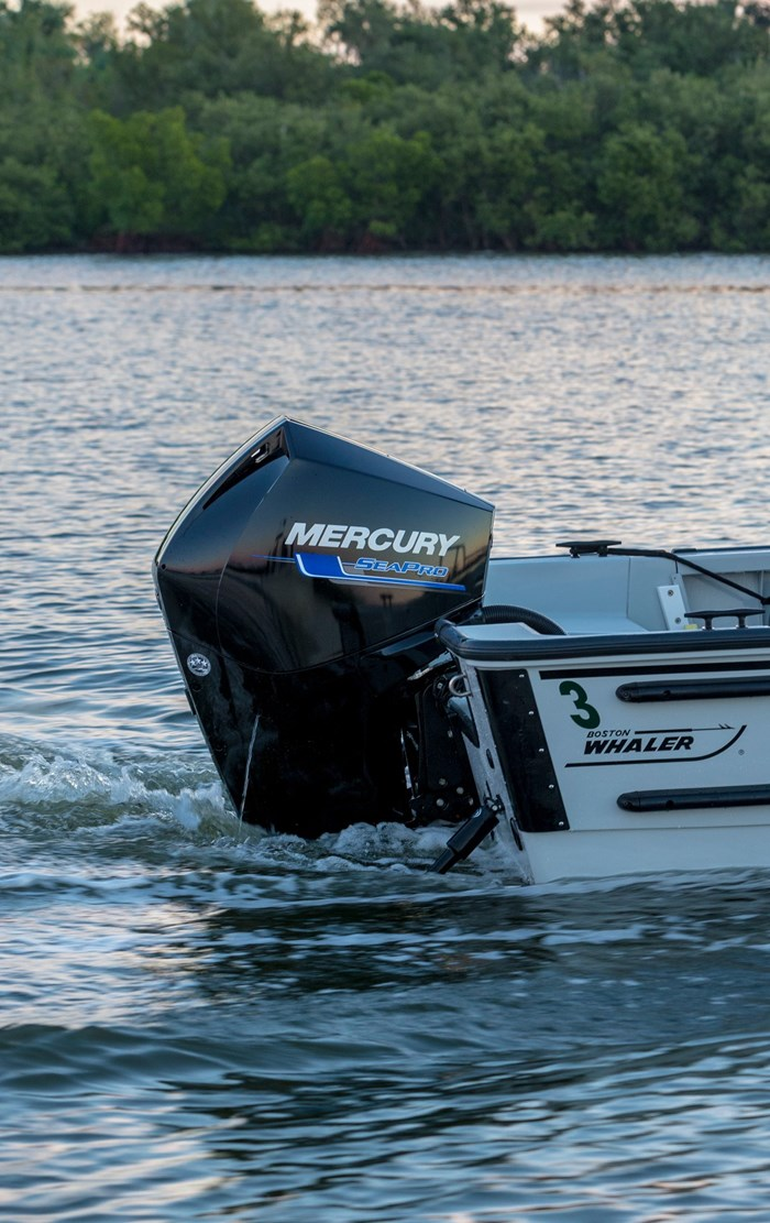 2021 Mercury 250XL V-8 4-Stroke SeaPro Commercial Outboard Photo 10 of 18