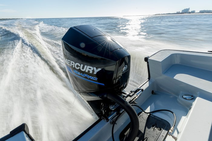 2021 Mercury 250XL V-8 4-Stroke SeaPro DTS Commercial Outboard Photo 10 of 18