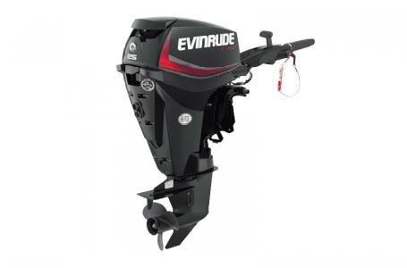 2018 Evinrude E25DGTLAF Photo 1 of 2