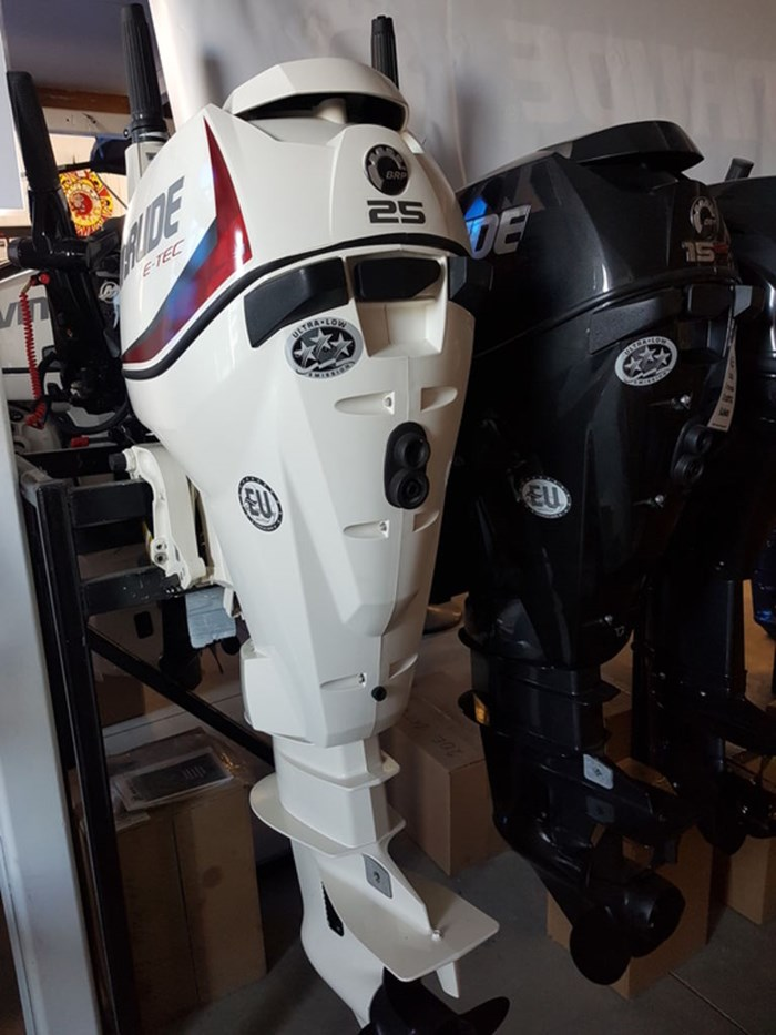 2018 Evinrude E-TEC 25 HP E25DRSL White Photo 1 of 1