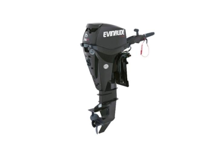 2018 Evinrude E-TEC 15 H.O. E15HTGL Graphite Photo 1 of 1