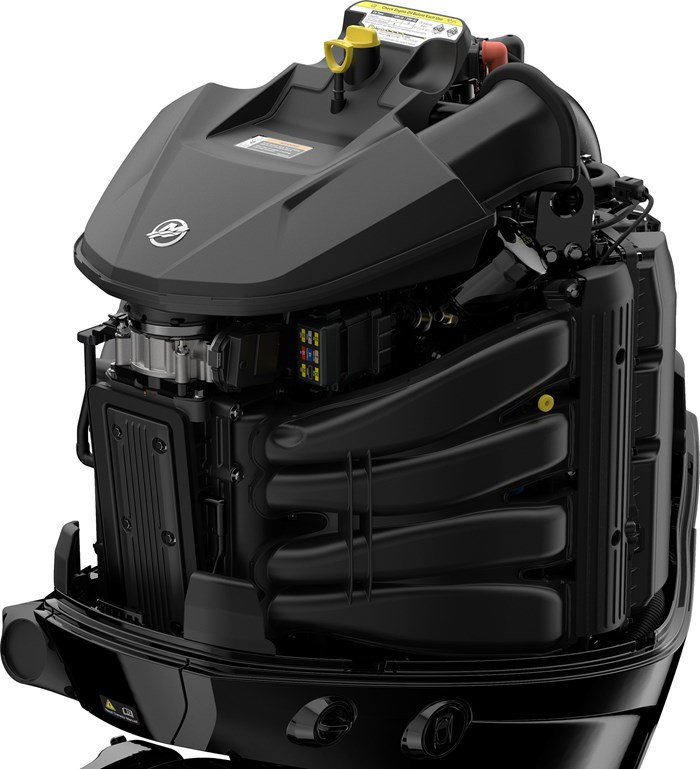 2021 Mercury 300L V-8 4-Stroke DTS Photo 13 of 19