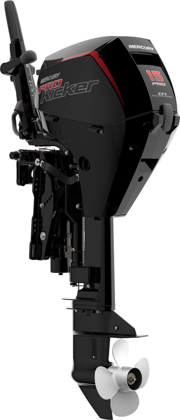 2022 Mercury 15ELHPT ProKicker 4-Stroke EFI Photo 2 sur 4