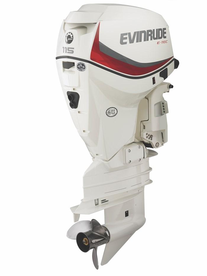 2020 Evinrude E115DSLAF Photo 1 of 2